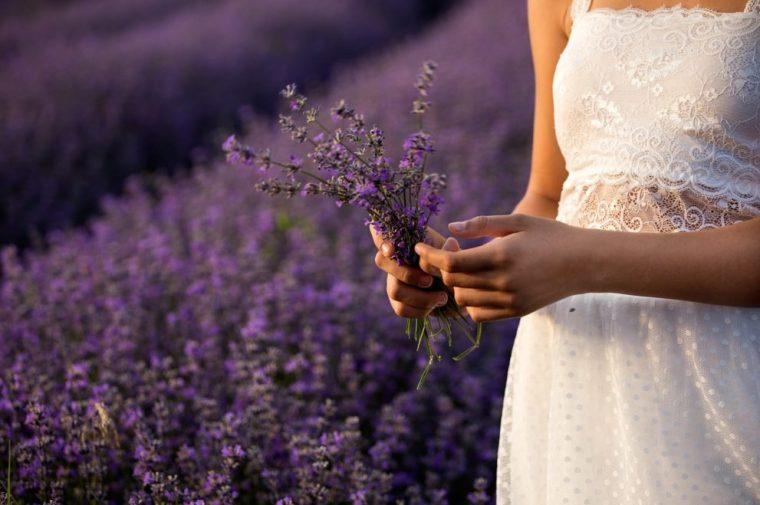 花嫁とラベンダー畑