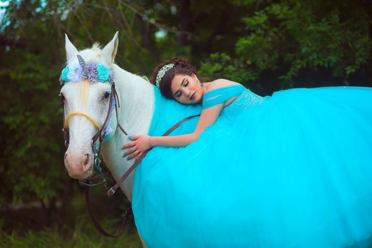 白馬とお姫様