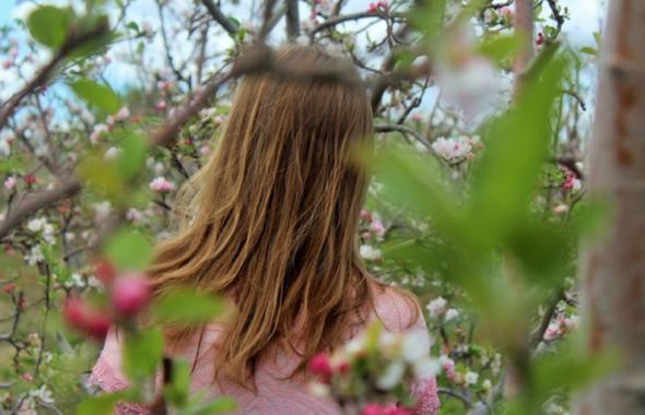 木の枝に囲まれる女性